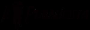 Logo Il Pubblicista